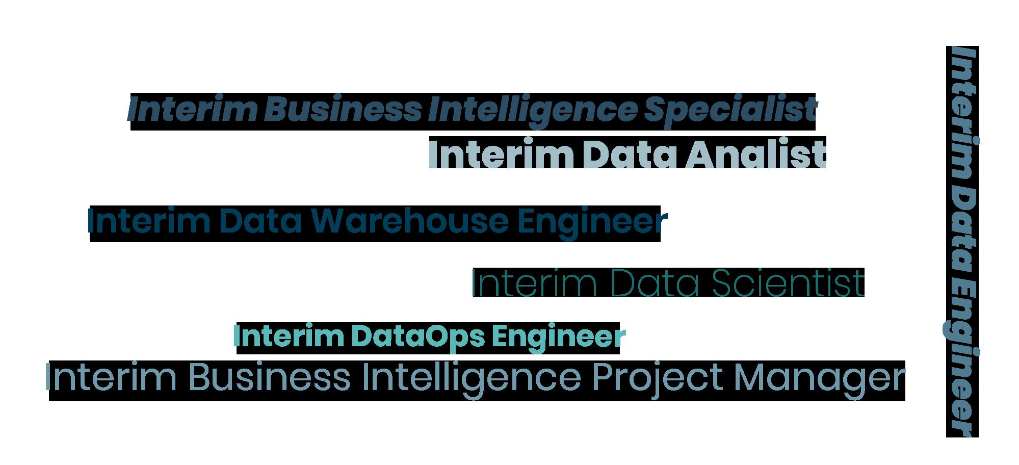 Detachering - Business Intelligence Specialisten - Data Analisten