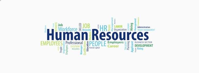 Qlik HR dashboard