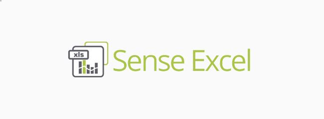 Sense Excel Reporting